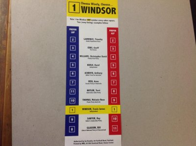 Travis Windsor How-to-vote